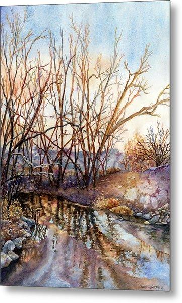 Along Boulder Creek Metal Print