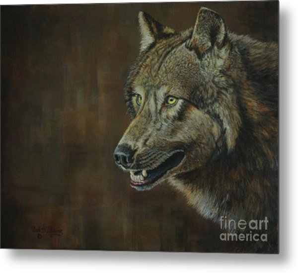 Alpha Male ......the Gray Wolf Metal Print