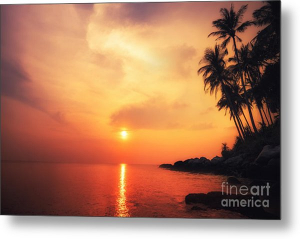 Amazing Colors Of Tropical Sunset Metal Print