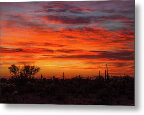 Metal Print featuring the photograph An Arizona Sky by Rick Furmanek