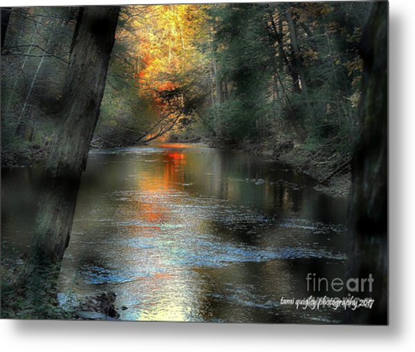 And Autumn Comes  Metal Print