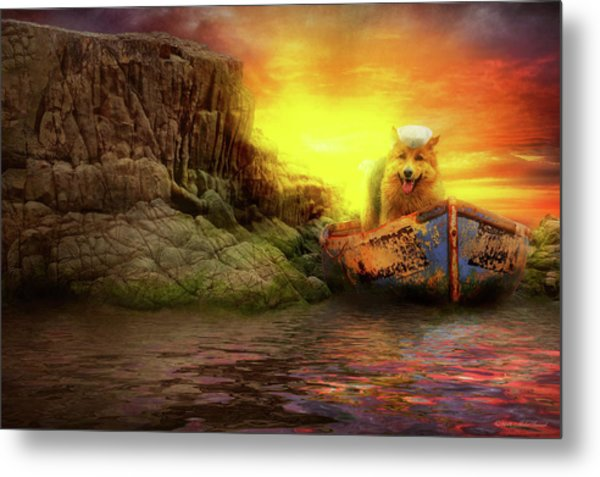Metal Print featuring the photograph Animal - Dog - Up The Creek Without A Pawdle by Mike Savad