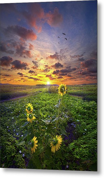 Metal Print featuring the photograph Any Time At All by Phil Koch