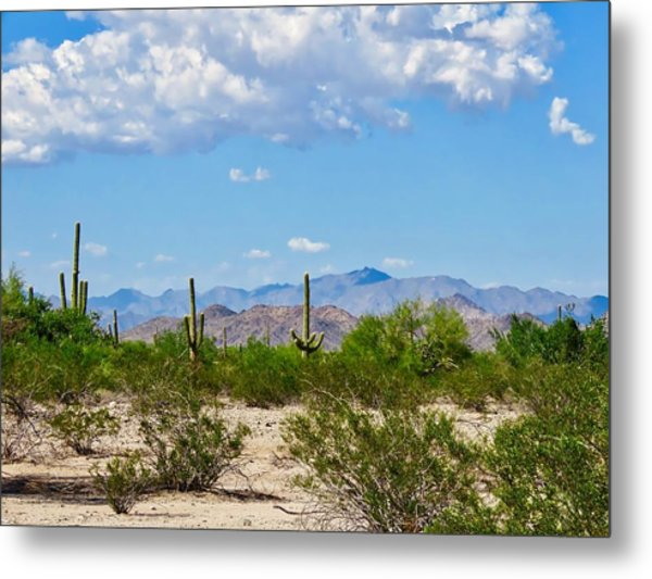 Arizona Desert Hidden Valley Metal Print