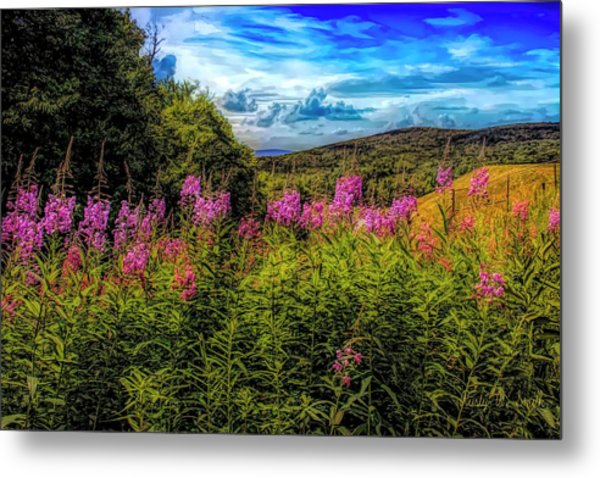 Art Photo Of Vermont Rolling Hills With Pink Flowers In The Fore Metal Print