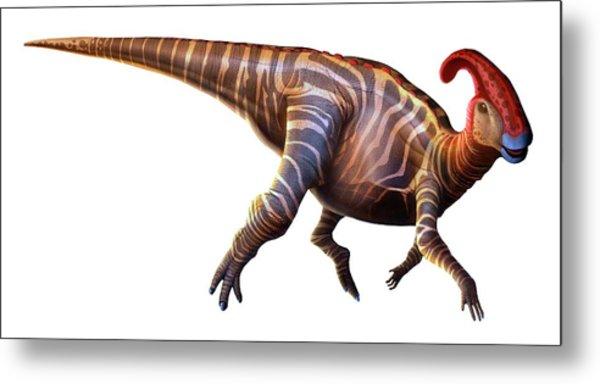 Artwork Of A Parasaurolophus Dinosaur Metal Print by Mark Garlick
