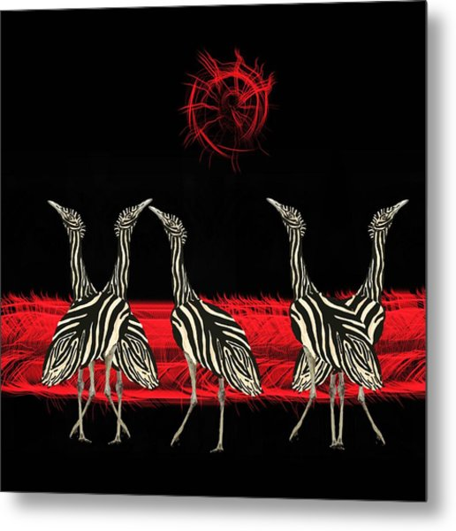 Zebra Australian Bustards Red Sun Metal Print