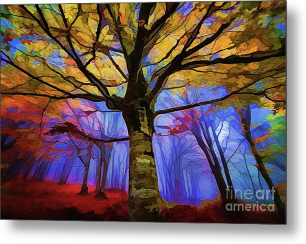 Autumn A18-120 Metal Print
