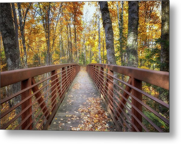 Autumn At Frog Bay  Metal Print