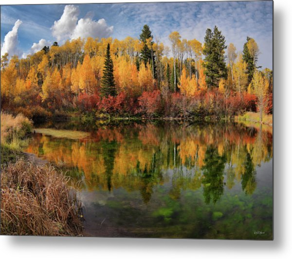 Autumn At Its Best Metal Print by Leland D Howard