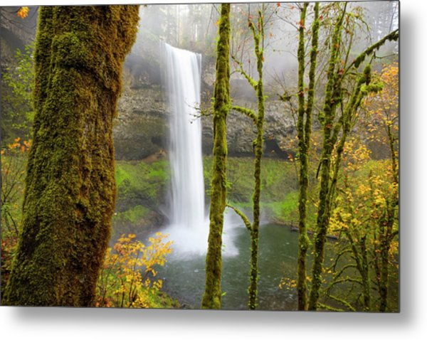 Metal Print featuring the photograph Autumn At Silver Falls State Park by Nicole Young