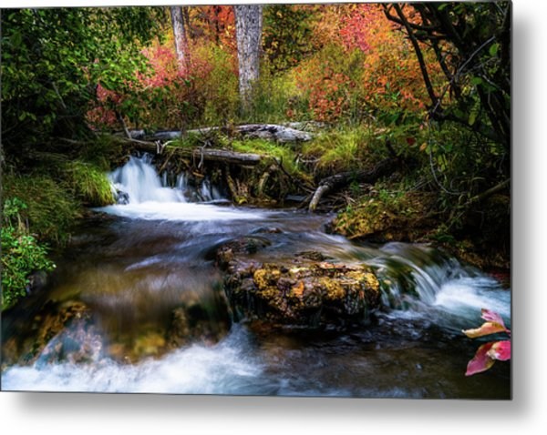 Metal Print featuring the photograph Autumn Cascades by TL Mair