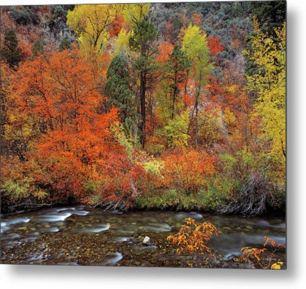 Autumn Creek Metal Print by Leland D Howard