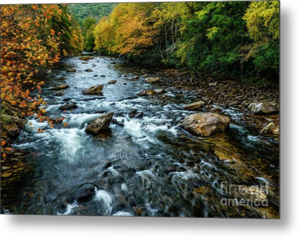 Autumn Day On Cranberry River Metal Print