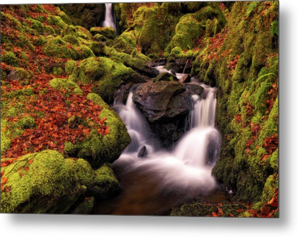 Metal Print featuring the photograph Autumn Falls by Elliott Coleman