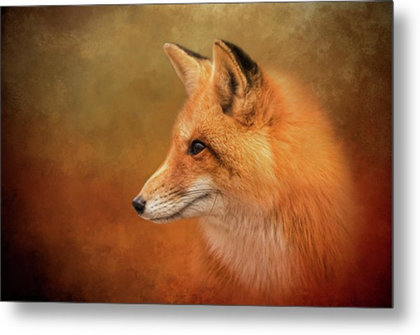Autumn Fox Metal Print