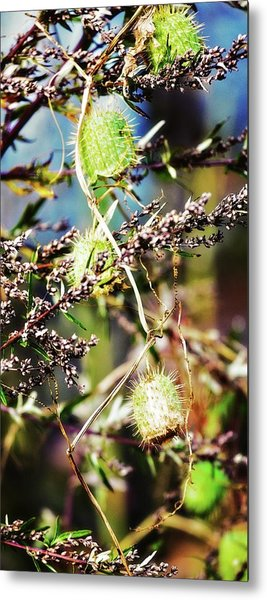 Metal Print featuring the photograph Autumn Fun Tapestry by Tatiana Travelways