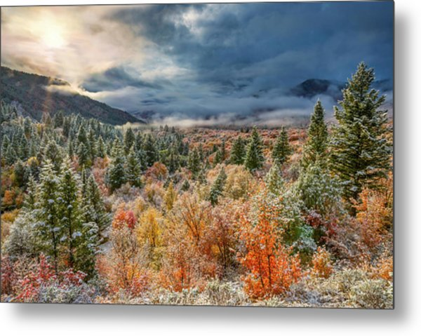 Autumn Grandeur Metal Print by Leland D Howard
