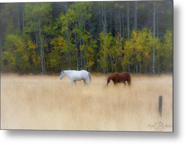 Autumn Horse Meadow Metal Print