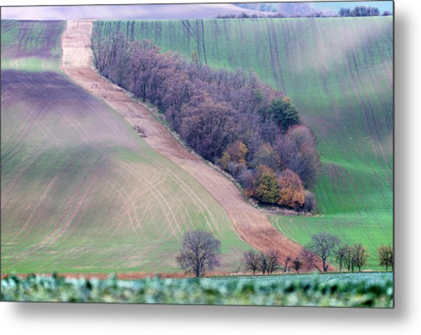 Metal Print featuring the photograph Autumn In Moravia 10 by Dubi Roman