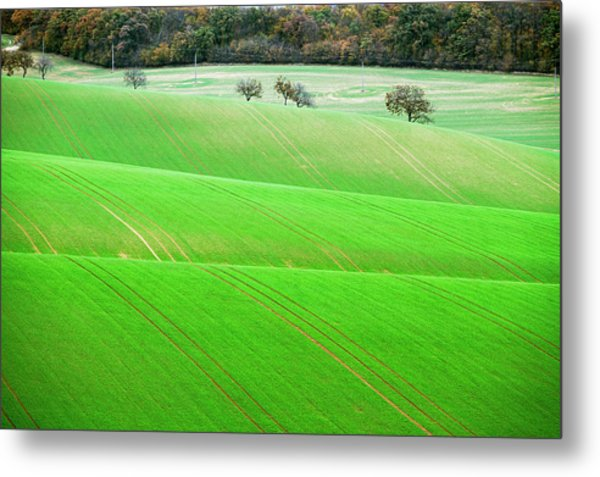 Metal Print featuring the photograph Autumn In Moravia 12 by Dubi Roman