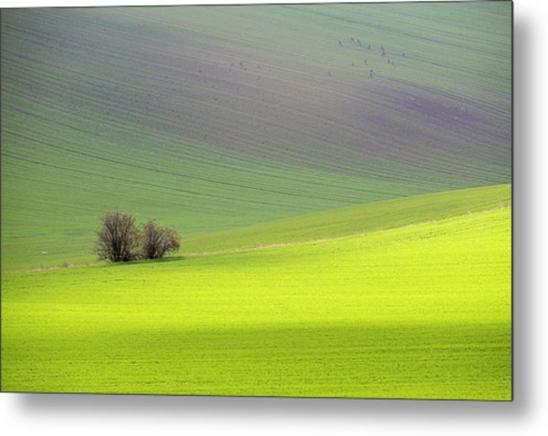 Metal Print featuring the photograph Autumn In Moravia 13 by Dubi Roman
