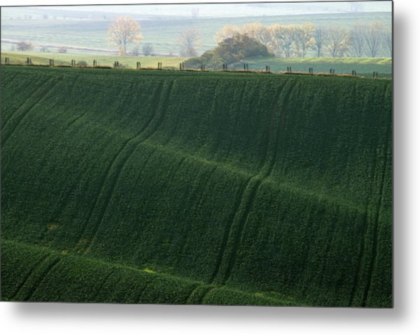 Metal Print featuring the photograph Autumn In Moravia 11 by Dubi Roman