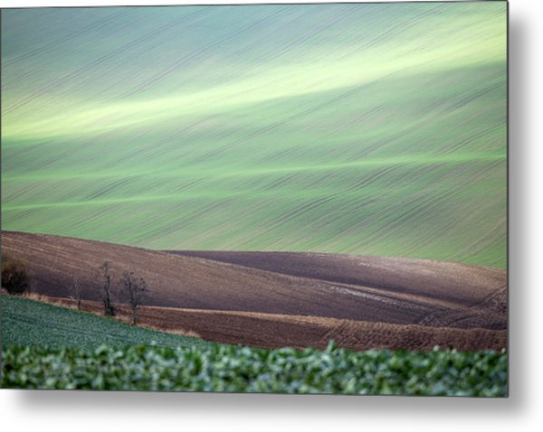Metal Print featuring the photograph Autumn In Moravia 4 by Dubi Roman