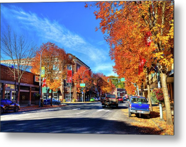 Metal Print featuring the photograph Autumn In Pullman by David Patterson