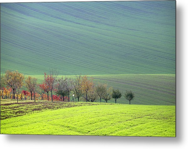 Autumn In South Moravia 18 Metal Print