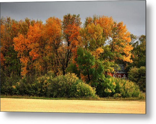 Autumn Is Nigh  Metal Print