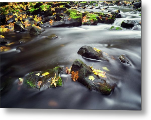 Metal Print featuring the photograph Autumn Landscape by Nicole Young