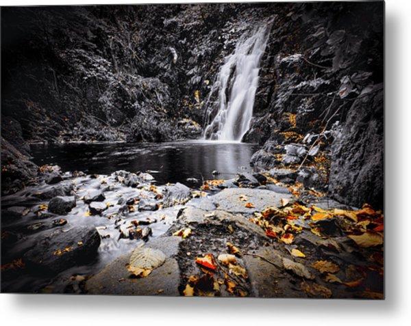 Autumn Leaves At Glenoe Metal Print