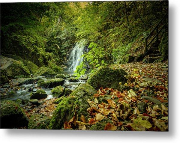 Autumn Leaves At Glenoe II Metal Print