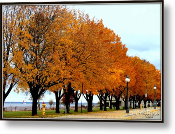 Autumn Leaves In Menominee Michigan Metal Print