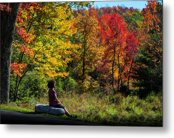 Autumn Leaves In The Catskill Mountains Metal Print