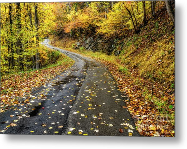 Autumn On A Country Road Metal Print