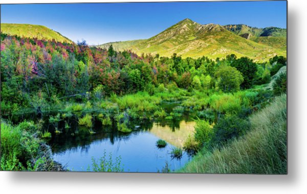 Metal Print featuring the photograph Autumn On The Little Deer Creek by TL Mair