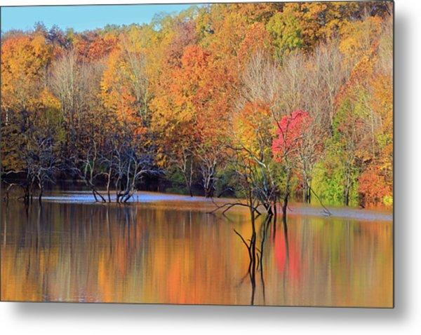 Metal Print featuring the photograph Autumn Reflections by Angela Murdock