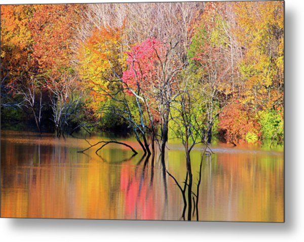 Metal Print featuring the photograph Autumn Reflections At Alum Creek by Angela Murdock