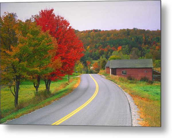 Autumn Road Metal Print by Denistangneyjr