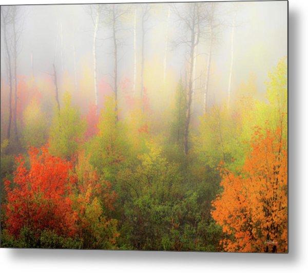 Autumn Stillness 2 Metal Print by Leland D Howard
