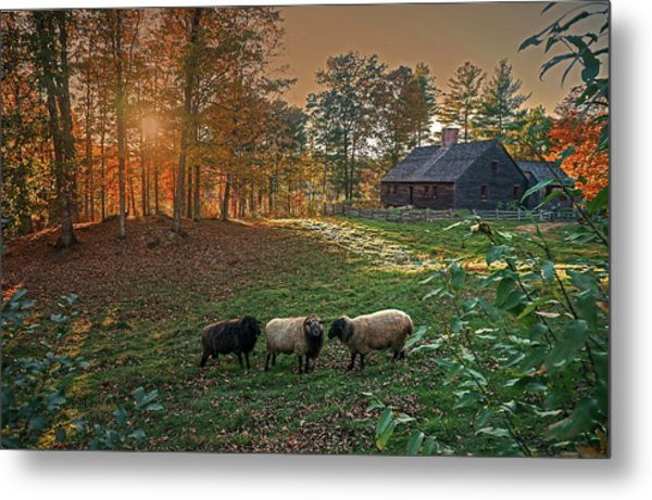 Autumn Sunset At The Old Farm Metal Print