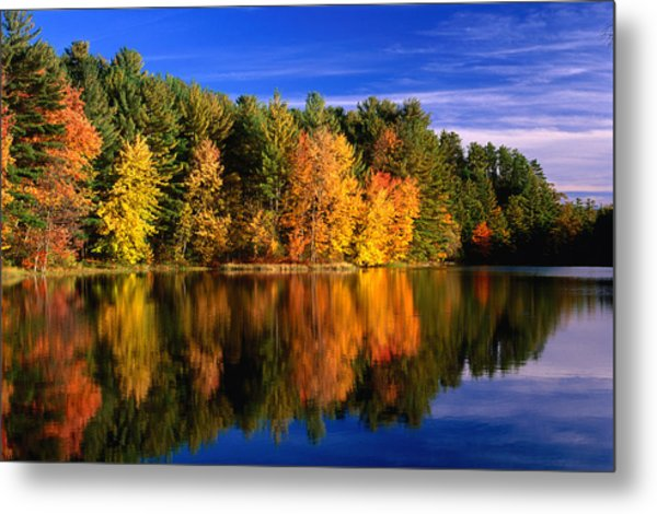 Autumn Trees In New Hampshire,new Metal Print by Lonely Planet