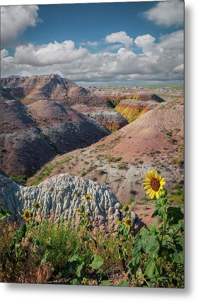 Badlands Sunflower - Vertical Metal Print