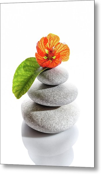 Balanced Stones And Red Flower Metal Print by Gm Stock Films