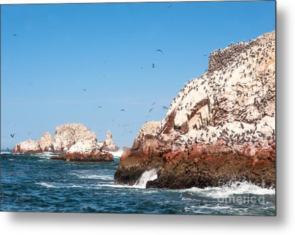 Ballestas Islands, Paracas National Metal Print