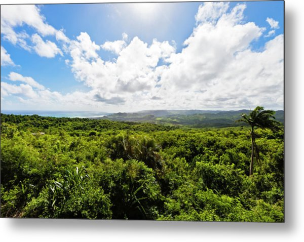 Barbados Hinterland Metal Print by Flavio Vallenari