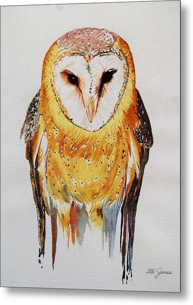 Barn Owl Drip Metal Print