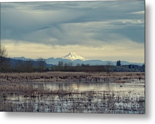 Metal Print featuring the photograph Baskett Slough National Wildlife Refuge by Craig Leaper